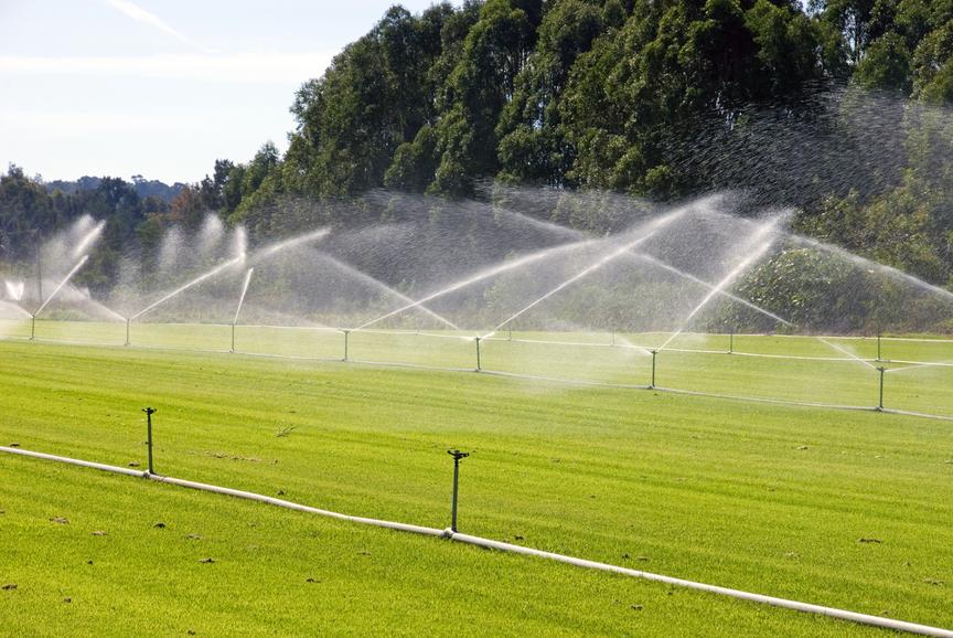 Paradise Turf Farm large sprinkler system