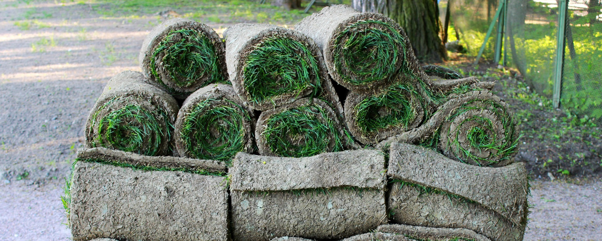 Paradise Turf Farm rolls of turf