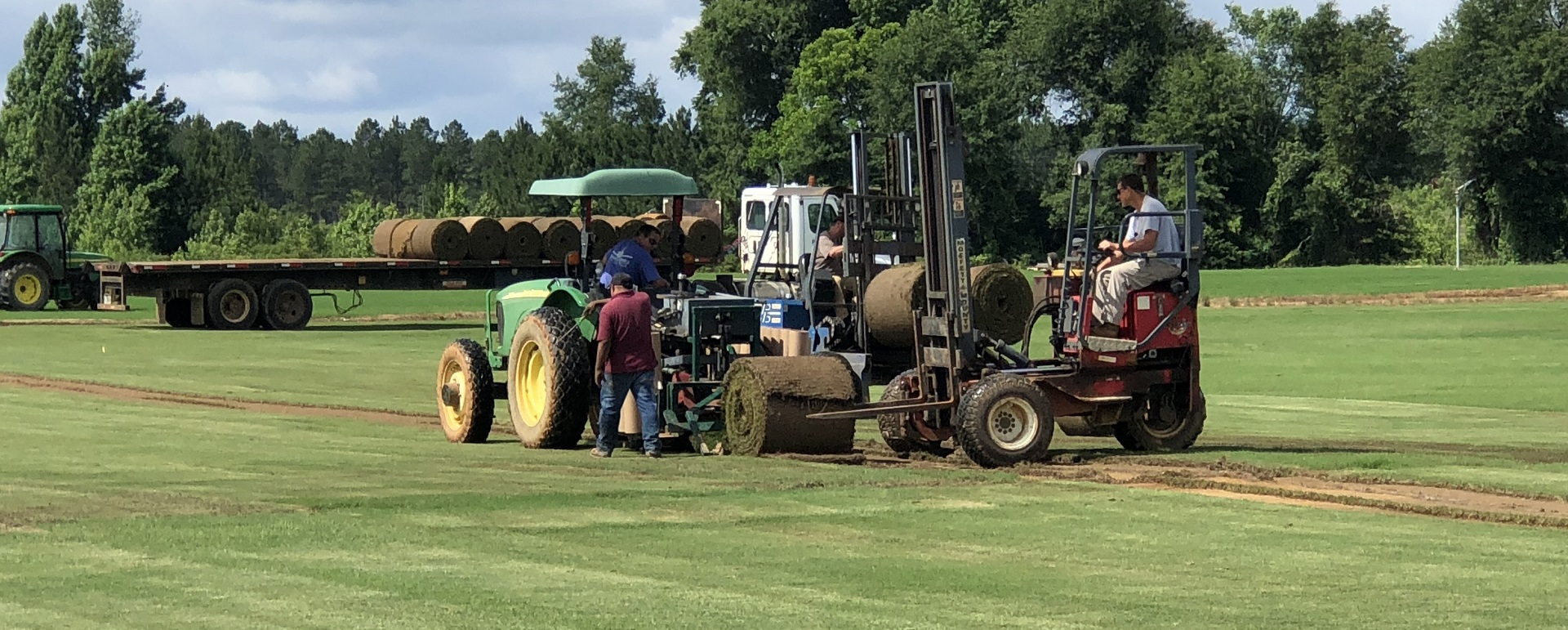 Paradise Turf Farm laying down turf with forklifts and tractor